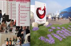Semaine des Primeurs di Bordeaux e Vinitaly. Mai più negli stessi giorni
