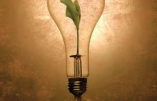 Concorso novità e innovazione Simei-Enovitis: iscrizioni fino al 1° luglio