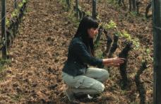 Elena Fucci: un solo vino, figlio della quota
