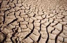 Al Congresso Assoenologi si affrontano i cambiamenti climatici