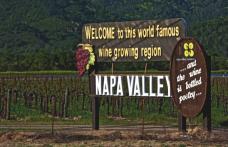 In Napa Valley discutiamo di blend e di single vineyards