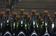 Nasce la super-cooperativa Emilia Wine