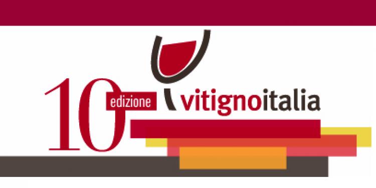 Aspettando Vitignoitalia. L'Anteprima il 3 dicembre