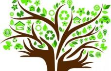 Gruppo Italiano Vini: un 2014 per la sostenibilità