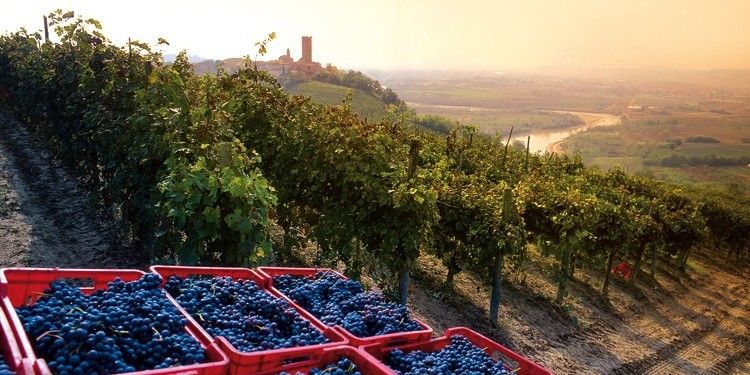 Langhe, Roero e Monferrato Patrimonio dell'Umanità