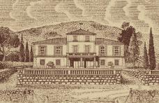 I vini del 2014. 100% Cabernet per il campione di Nozzole
