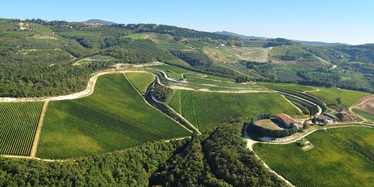 Maternigo: il futuro dell'Amarone secondo Tedeschi