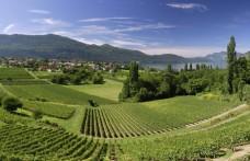 L'ultima Appellation francese è il Crémant de Savoie