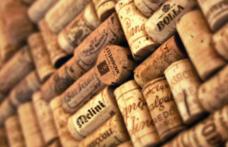 Cambio ai vertici del Gruppo Italiano Vini