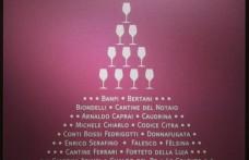 Re Panettone e i vini di Natale: una coppia perfetta!