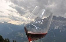 Le 55 Cantine all'altezza del Wine-tasting delle Aquile