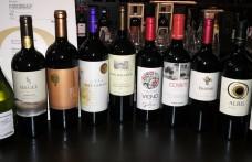 Scoprire il nuovo Cile. Dieci vini cileni da provare