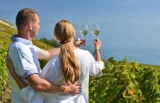 Il vino fa male?