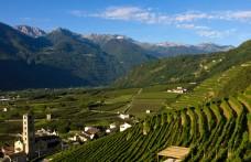 Fine settimana in Valtellina tra piste, crotti e cantine