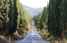 Weekend a Bolgheri: un viaggio nel tempo