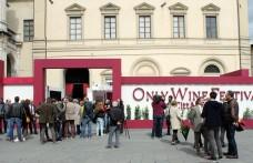 Only Wine Festival: una terza edizione di successo