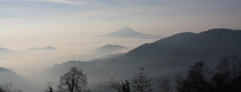 Scoprire i vini vulcanici sui Colli Euganei