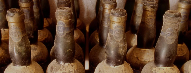 Diversamente giovane. La longevità dei vini