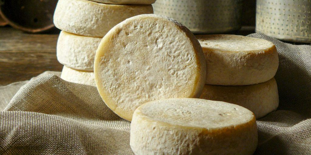 Murazzano Dop, il formaggio di Langa per intenditori