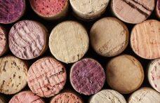 Scoprire i vitigni autoctoni italiani ad Autochtona