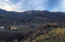 Lucca Biodinamica di nome e di fatto