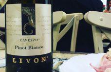 Rinasce Cavezzo, il Pinot bianco di Livon
