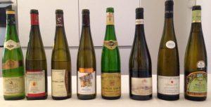 vini Alsazia degustazione