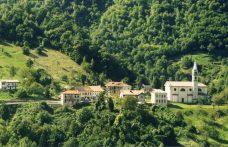 Bianchetta trevigiana: non teme la peronospora (ma la muffa sì)