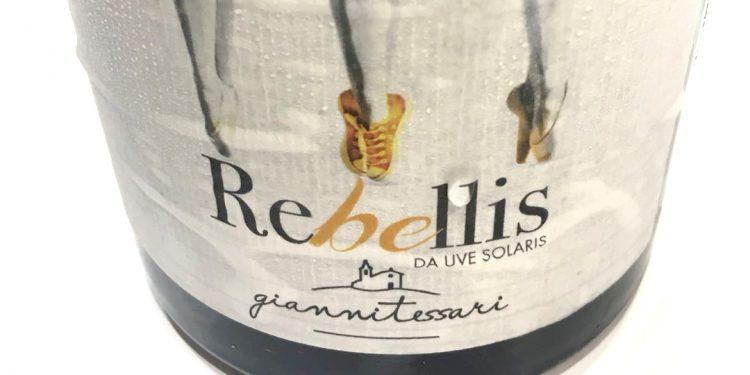 Nasce Rebellis, il primo vino piwi di Gianni Tessari