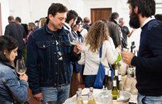 Comincia domani Naturale 2018, Salone del vino artigianale in Abruzzo