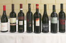 Rosso Piceno: 10 vini da provare (e un viaggio da prenotare)