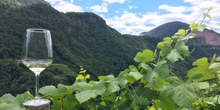 Al via la XXXI Rassegna Müller Thurgau in Valle di Cembra