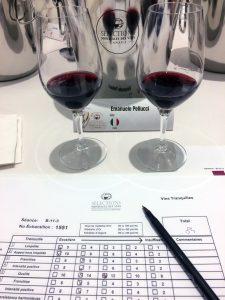 selections mondiales des vins canada degustazioni