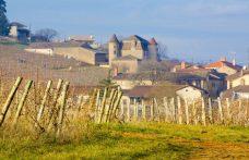 Borgogna 2017 (e preview 2018): cosa ci aspetta nel calice