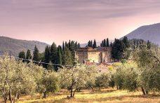 Biodinamica per il vino: c'è un corso di alta formazione