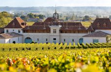 Château Angélus in vendita? La famiglia si oppone