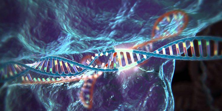 Genoma editing e Ogm sono sulla stessa barca