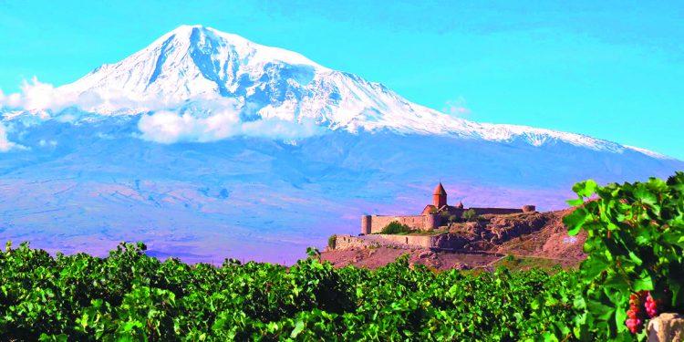Candidiamo la vitis vinifera a patrimonio dell'umanità
