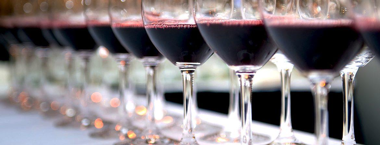 Teroldego e Pinot noir in sei masterclass a Incontri Rotaliani