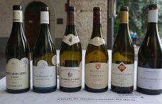Il trionfo dei climats in 5 vini (+1) della Côte d'Or