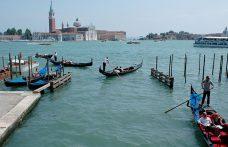 Pinot grigio delle Venezie: il primo convegno nazionale