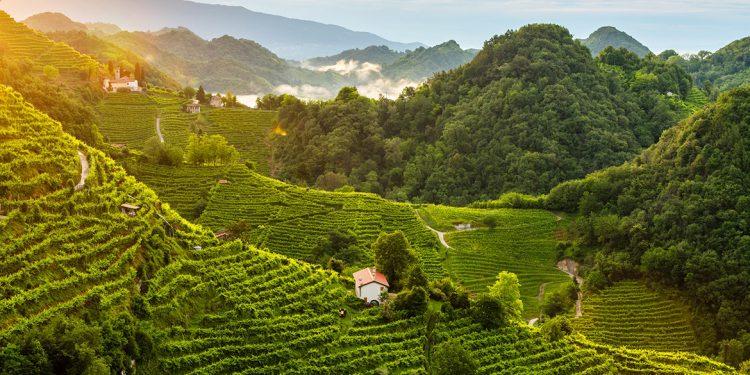 I colli di Conegliano Valdobbiadene patrimonio Unesco