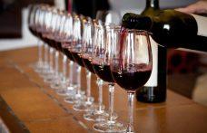 La prima Scuola universitaria per Maestri assaggiatori di vino