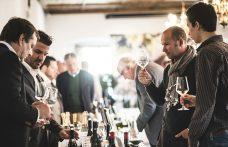 Top of Vini Alto Adige: il tasting dei più premiati dalla critica