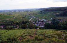 Incontro con 6 produttori di Borgogna