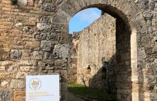 Anteprima Vernaccia di San Gimignano: l'annata 2019 sarà memorabile