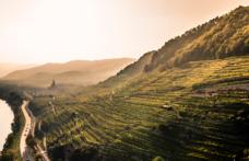 La regione austriaca Wachau diventa Dac