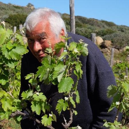 vino naturale in Toscana