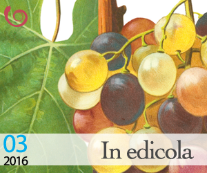 banner-cdb-3-2016-in-edicolapng