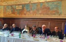 Vernaccia di San Gimignano: 50 anni in Anteprima